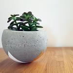 Le cache-pot DIY en béton créatif !